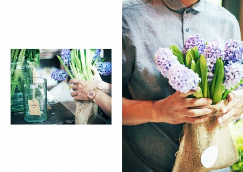 10428115 805091209514548 7222648836575084493 o Wallflowers เป็นดอกไม้ช่อใหญ่ เก็บเอามาไว้ให้เธอ