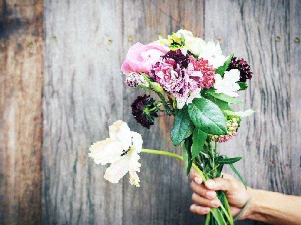 1891411 803622059661463 804408566417048268 o Wallflowers เป็นดอกไม้ช่อใหญ่ เก็บเอามาไว้ให้เธอ