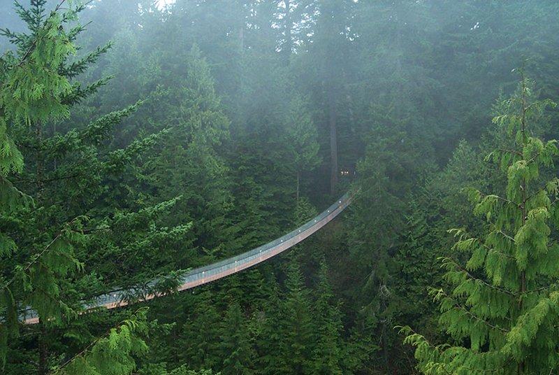 CapBridge 3 Vancouver's Capilano Suspension Bridge Park กิจกรรมสำรวจธรรมชาติและชมวิวจากบนยอดต้นไม้