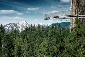 Vancouver's Capilano Suspension Bridge Park กิจกรรมสำรวจธรรมชาติและชมวิวจากบนยอดต้นไม้ 2 - Vancouver activities