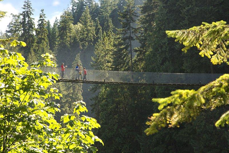 Gallery Image Guests on the Bridge Vancouver's Capilano Suspension Bridge Park กิจกรรมสำรวจธรรมชาติและชมวิวจากบนยอดต้นไม้