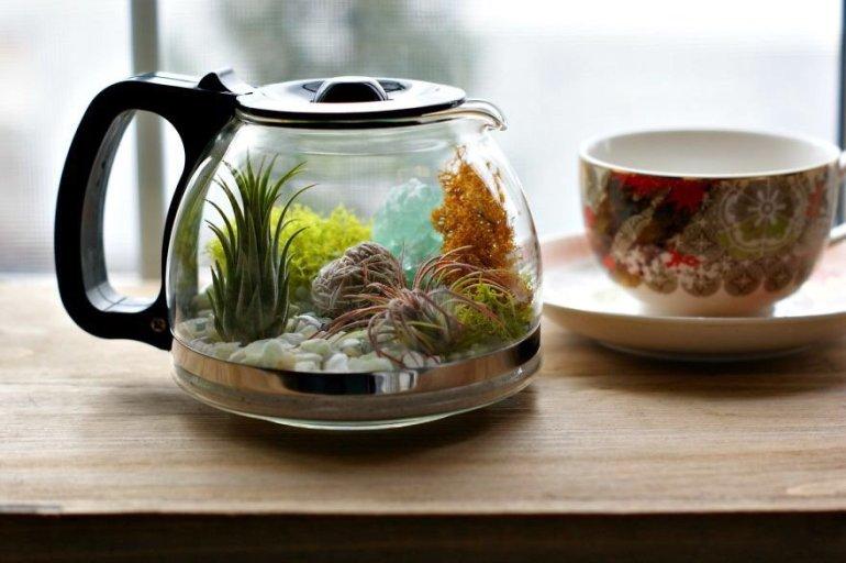 DIY สวนในกาน้ำชาไม่ใช้แล้ว ของตกแต่งชิ้นเดียวในโลก ไม่ต้องดูแล ไม่ต้องรดน้ำมาก 13 - Green