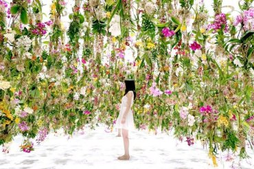 Floating-Flower-Gardenสวนดอกไม้ลอยฟ้า ที่ญี่ปุ่น 17 - Flower