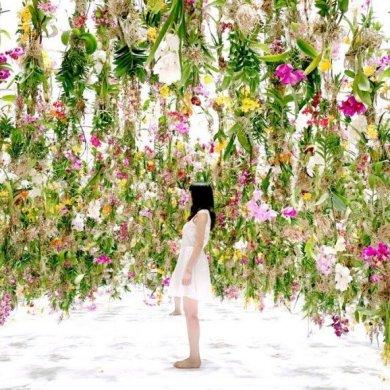 Floating-Flower-Gardenสวนดอกไม้ลอยฟ้า ที่ญี่ปุ่น 23 - floating garden