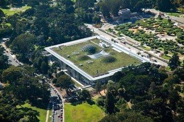 ฝรั่งเศสออกกฎหมายใหม่ ให้ทุกอาคารมีหลังคาสีเขียว ปลูกต้นไม้ ลดโลกร้อน
