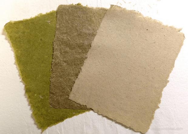 วัชพืชไม่ไร้ค่าอีกต่อไป DIY เปลี่ยนหญ้าเป็นกระดาษทำมือ สวยอีกตะหากแน่ะ! 19 - กระดาษ