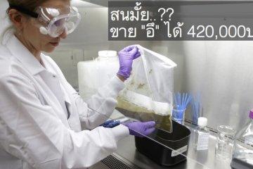 การรักษาโรคแบบMicrobiome ทำให้คนสุขภาพดี มีรายได้เสริมจาก อึ! 420,000บ./ปี 2 - biomed