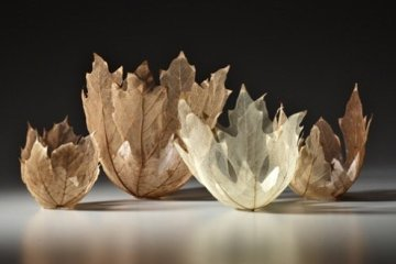 """ดีไซน์งดงามไร้กาลเวลา """"ชามใบไม้"""" สุดยอดไอเดียออกแบบโดย Kay Sekimachi 8 - Japan"""