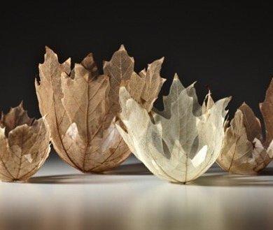 """ดีไซน์งดงามไร้กาลเวลา """"ชามใบไม้"""" สุดยอดไอเดียออกแบบโดย Kay Sekimachi 14 - Japan"""