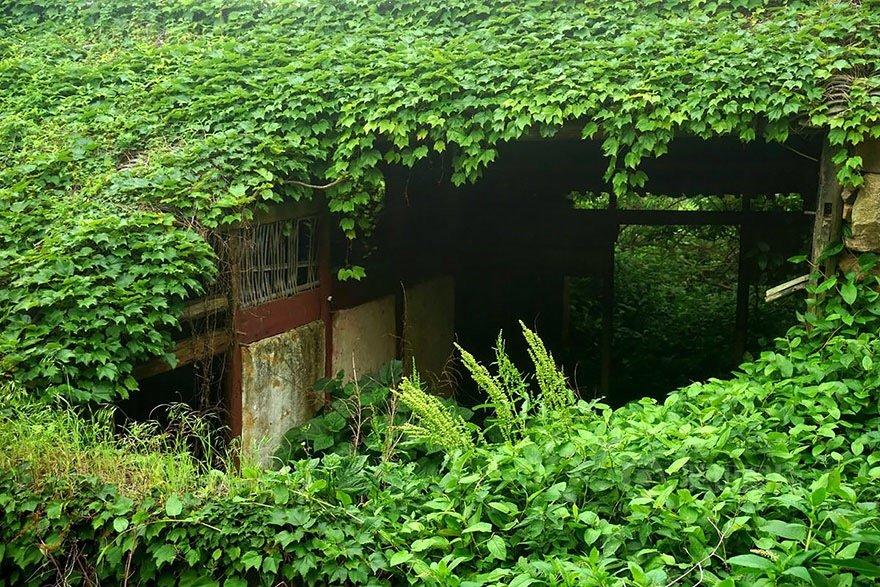 หมู่บ้านชาวประมงในจีน ที่ถูกธรรมชาติยึดพื้นที่คืน 18 - abandon village