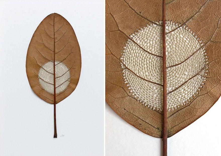 ศิลปะการถักทอ บนใบไม้.. สมดุลระหว่างความบอบบาง และแข็งแกร่ง 19 - Art & Design