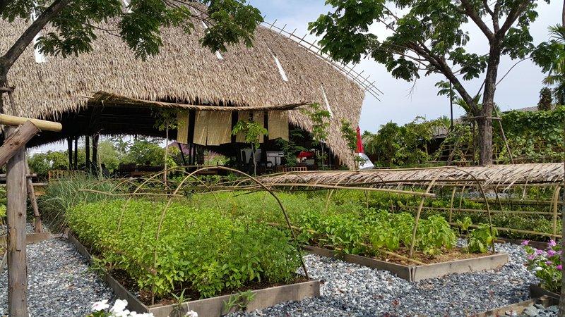 1 คิดจะพัก คิดถึง Piasim Garden จุดแวะพักมีสไตล์ ถ.สายบางปะกง – ฉะเชิงเทรา