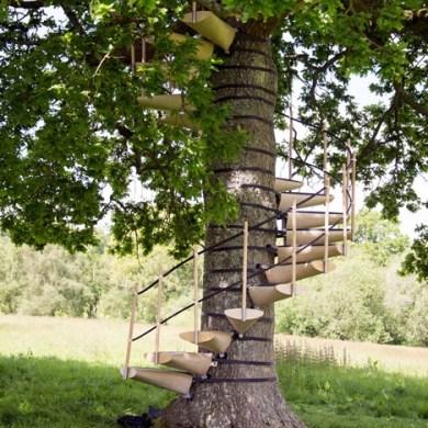 CanopyStair..ปีนบันไดขึ้นต้นไม้.. 20 - Royal College of Art
