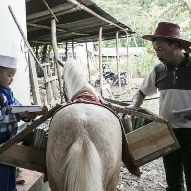 ห้องสมุดบนหลังม้า กระจายความรู้สู่ชาวอินโดนีเซีย 16 - books