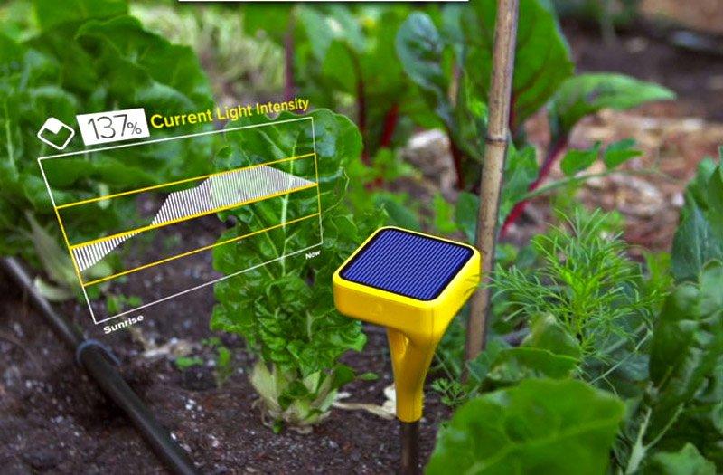 tasty-tech-june-8-edyn-garden-670