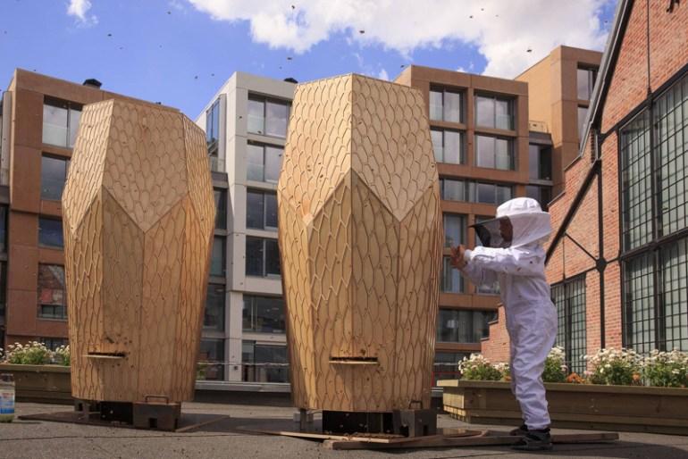 Vulkan Beehive สร้างสรรค์บ้านไม้ให้กับผึ้งกว่า 160,000 ตัว 13 - Architecture