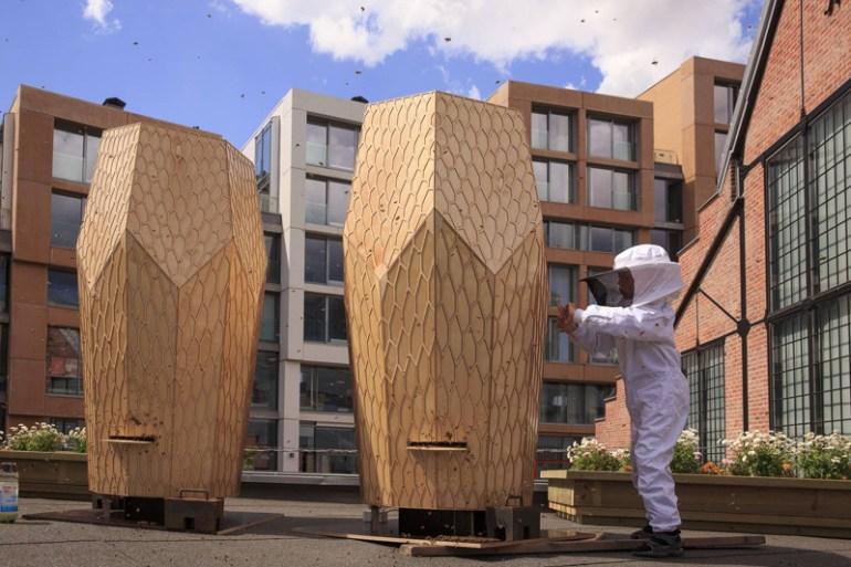 Vulkan Beehive สร้างสรรค์บ้านไม้ให้กับผึ้งกว่า 160,000 ตัว 27 - Architecture