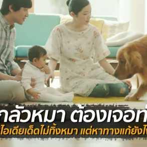 """ทำไงดีเมื่อ """"ลูกกลัวหมา"""" ไอเดียเริศของพ่อเด็กจากครอบครัวญี่ปุ่น 17 - baby"""