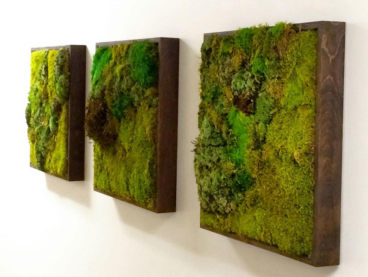 Moss-Wall-Gallery