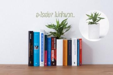 Book planter นี่หนังสือ หรือ กระถางต้นไม้ ดีไซน์การปลูกต้นไม้จาก YOY studio, Japan 18 - book