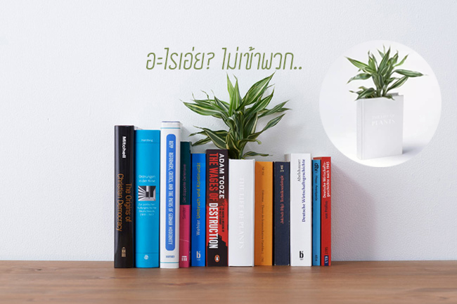 Book planter นี่หนังสือ หรือ กระถางต้นไม้ ดีไซน์การปลูกต้นไม้จาก YOY studio, Japan 18 - Green