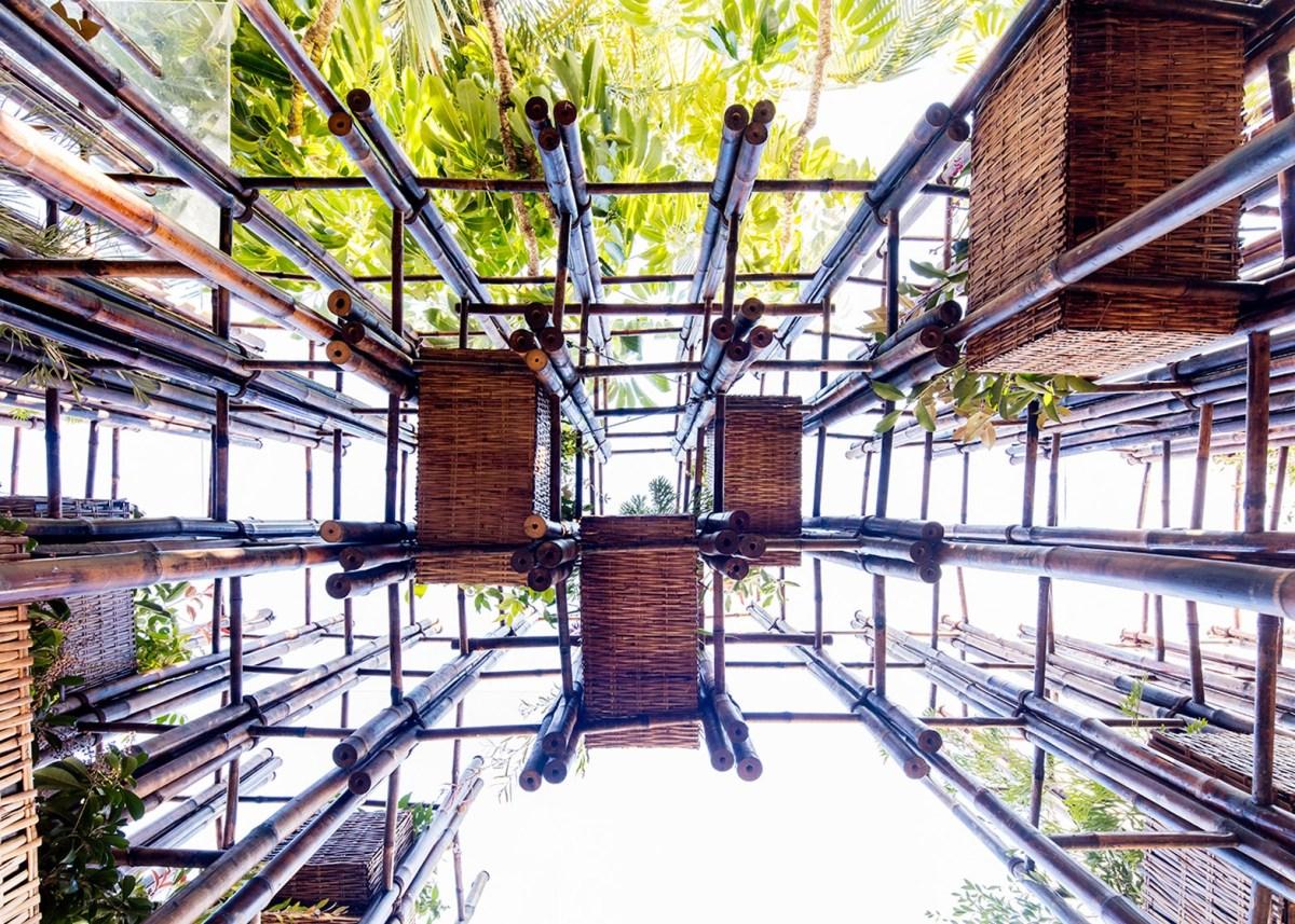 ไม้ไผ่..เหล็กสีเขียวของศตวรรษที่ 21 17 - bamboo