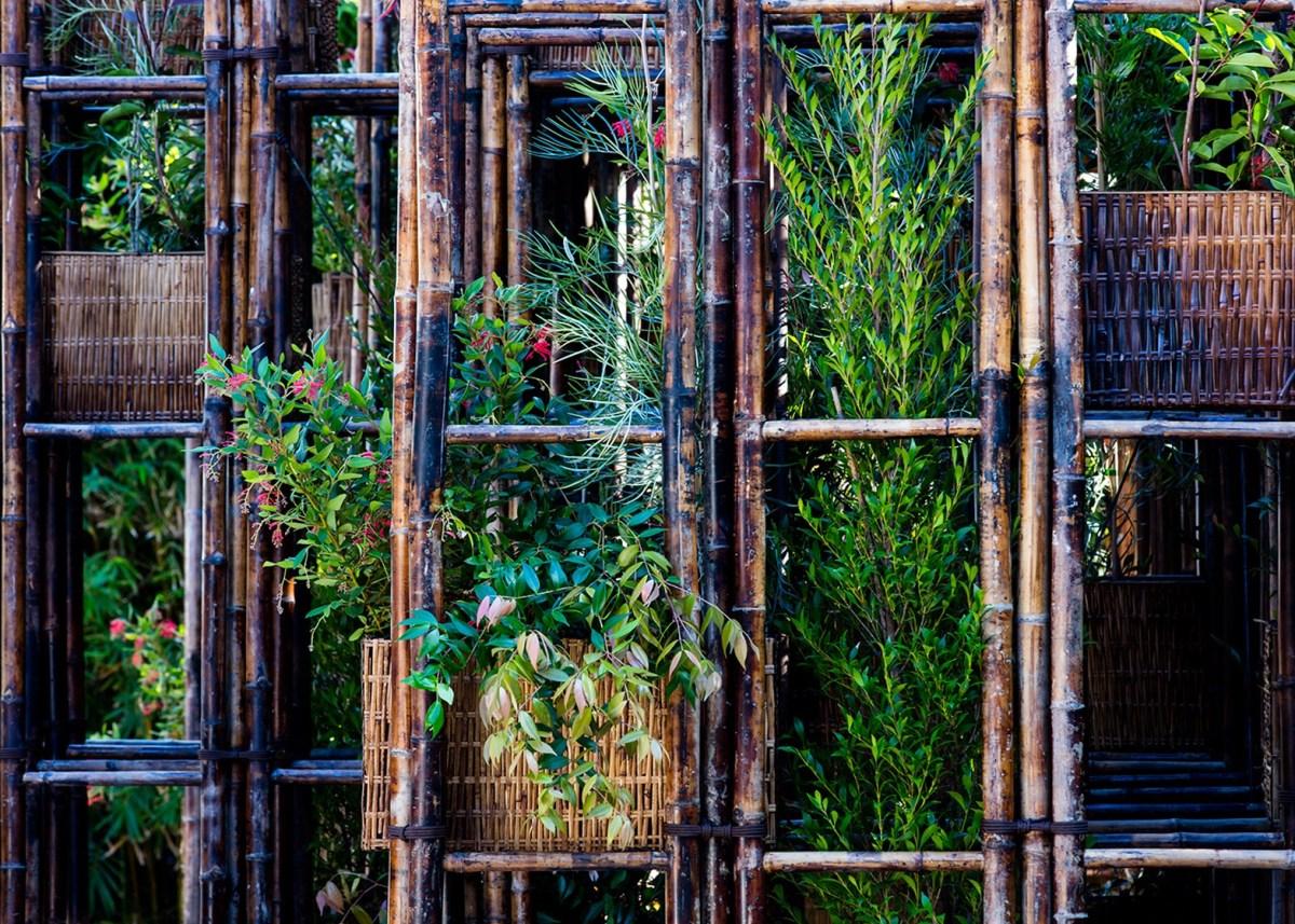 ไม้ไผ่..เหล็กสีเขียวของศตวรรษที่ 21 18 - bamboo