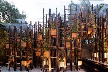 ไม้ไผ่..เหล็กสีเขียวของศตวรรษที่ 21