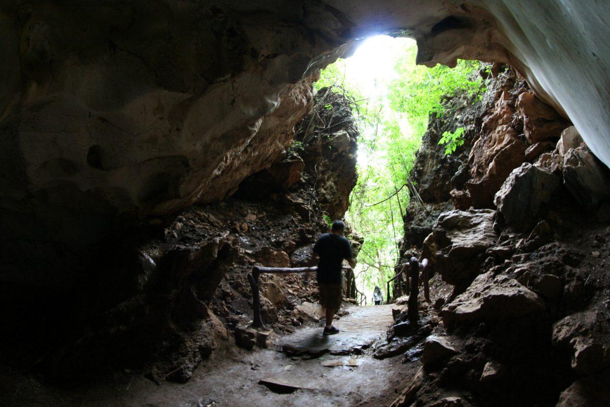 IMG 0243 หุบป่าตาด ป่าดึกดำบรรพ์ในอุทัยธานีที่ค้นพบสิ่งมีชีวิตชนิดใหม่ของโลก