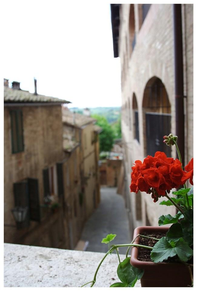 IMG 5934 650x963 4 เมืองเล็กเล็กแต่ความสวยสุดยิ่งใหญ่ ที่ควรไปเยือนสักครั้งในชีวิต