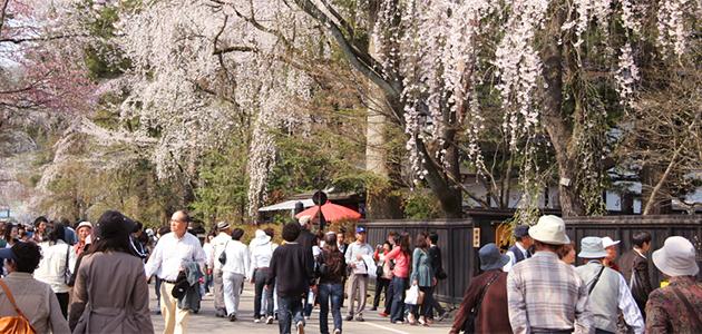 IMG 3083 เที่ยว โทโฮคุ และโตเกียว แบบ 360องศา