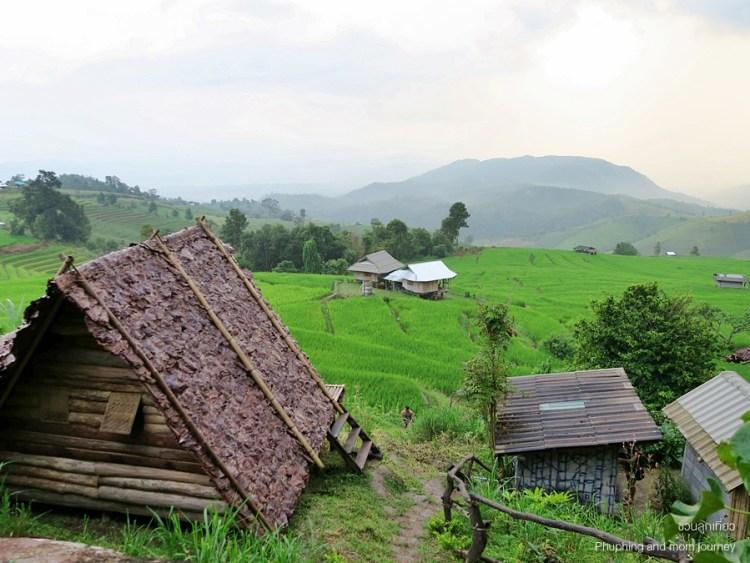 papongpieng7 750x563 เสพวิวหลักล้านที่บ้านป่าบงเปียง สุดยอดนาขั้นบันไดของเมืองไทย