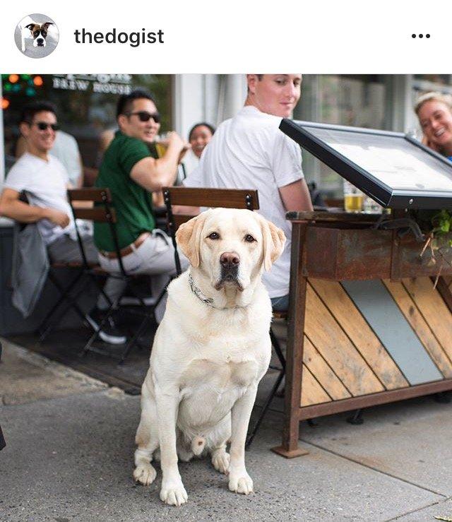 10 Instagram Accounts ไอจีคอนเทนต์ดี๊ดี ที่ควรค่าแก่การฟอลโล่!! 36 - IG