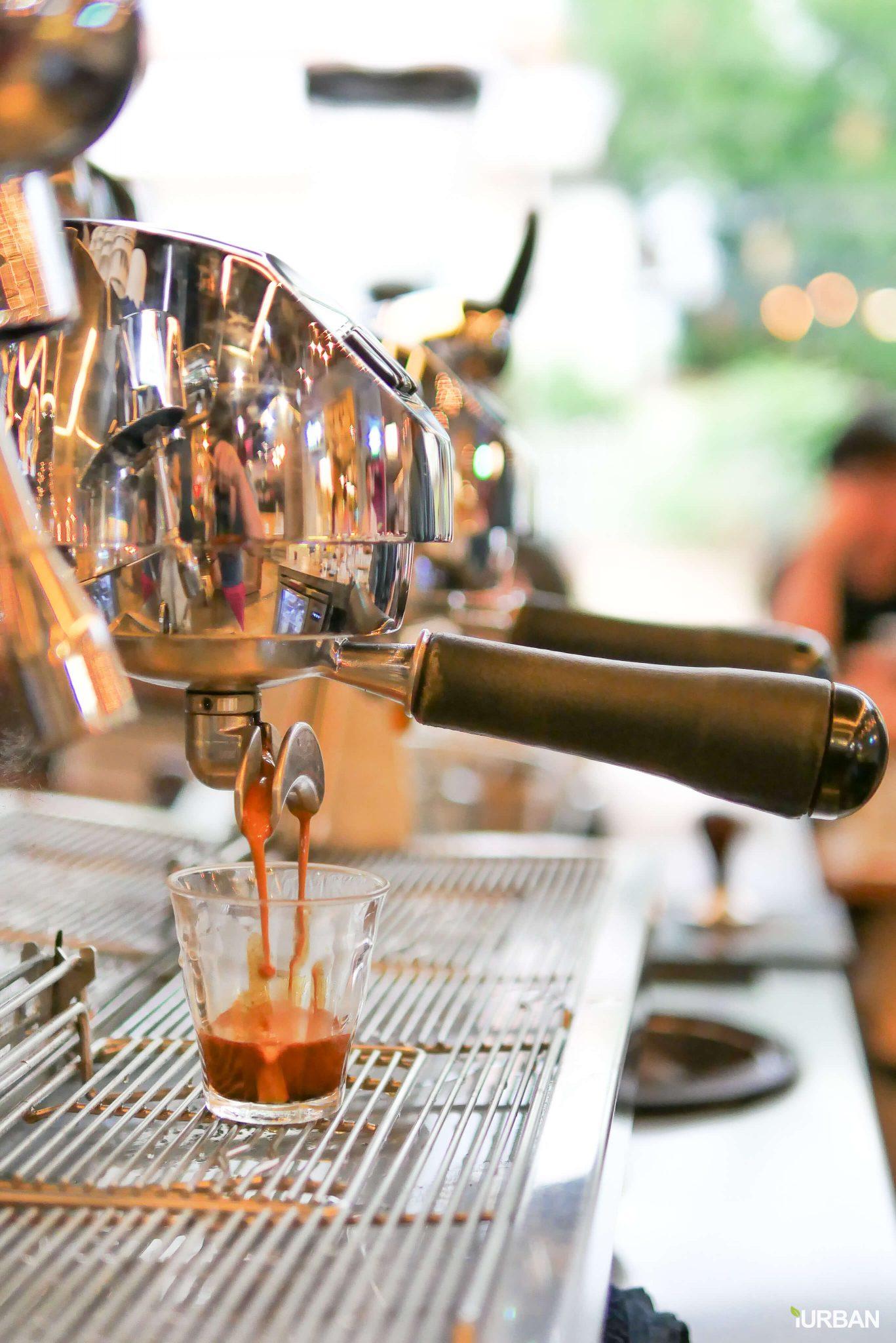 10 ร้านกาแฟ ทองหล่อ - เอกมัย เครื่องดื่มเด็ด บรรยากาศดี 24 - Ananda Development (อนันดา ดีเวลลอปเม้นท์)