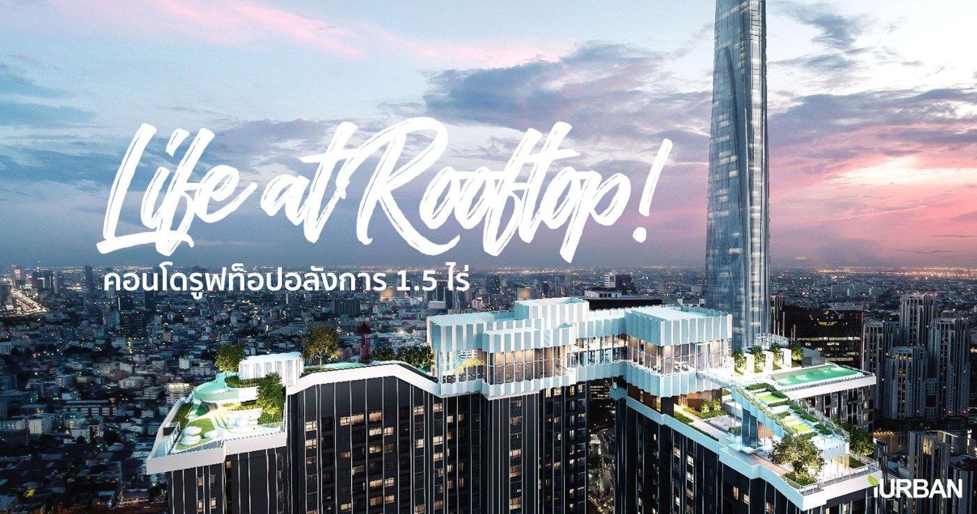 สำรวจทำเล New CBD แยกพระราม 9 พร้อมคอนโด Life ASOKE-RAMA9 ส่วนกลางเหนือชั้น Rooftop Facility ขนาด 1.5 ไร่ ใกล้ MRT 300 เมตร 13 - AP (Thailand) - เอพี (ไทยแลนด์)