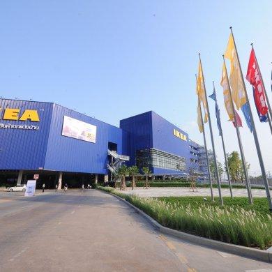 แฟนอิเกียตบเท้าร่วมเฉลิมฉลอง ต้อนรับเปิดอิเกีย บางใหญ่อย่างคับคั่ง! 48 - IKEA (อิเกีย)