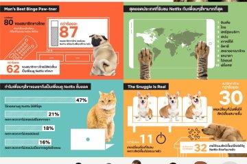 Netflix กับเพื่อนซี้สี่ขา ผลสำรวจเผย สัตว์เลี้ยงสี่ขาคือคู่หูนักดูมาราธอนที่ดีที่สุดของคุณ 12 -