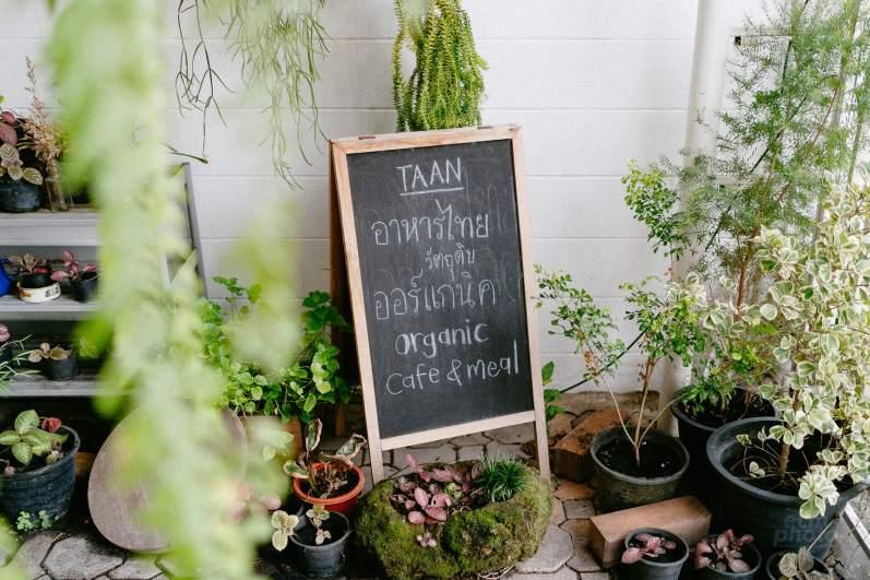 %name TAAN (ทาน) ORGANIC CAFE <br> ที่คุณทานอิ่มแค่ไหน ก็จ่ายตามต้องการ