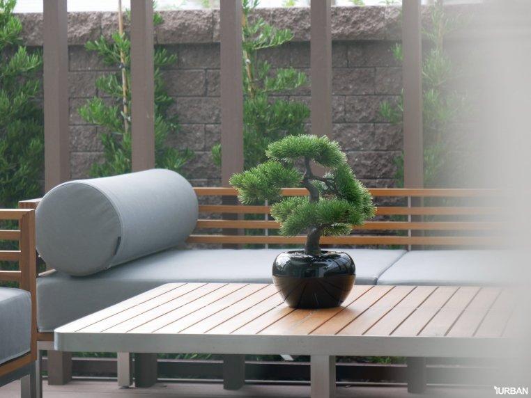 %name AIRI แอริ พระราม 2 บ้านเดี่ยว 4 ห้องนอน ออกแบบโปร่งสบายด้วยแนวคิดผสานการใช้ชีวิตกับธรรมชาติ