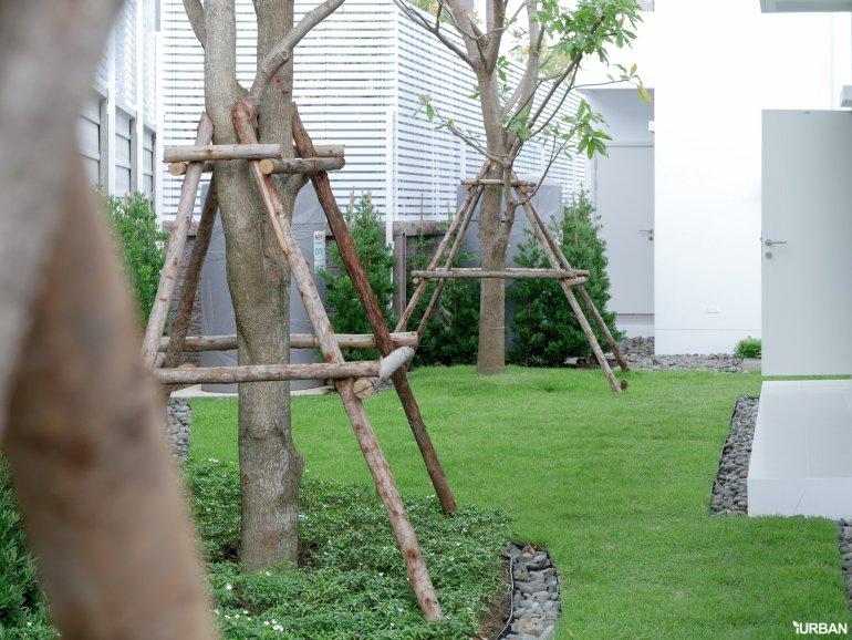 AIRI แอริ พระราม 2 บ้านเดี่ยว 4 ห้องนอน ออกแบบโปร่งสบายด้วยแนวคิดผสานการใช้ชีวิตกับธรรมชาติ 25 - Ananda Development (อนันดา ดีเวลลอปเม้นท์)