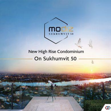 แอสเซทไวท์ เปิดตัวโครงการใหม่ โมดิซ สุขุมวิท 50 (Modiz Sukhumvit 50) 16 -
