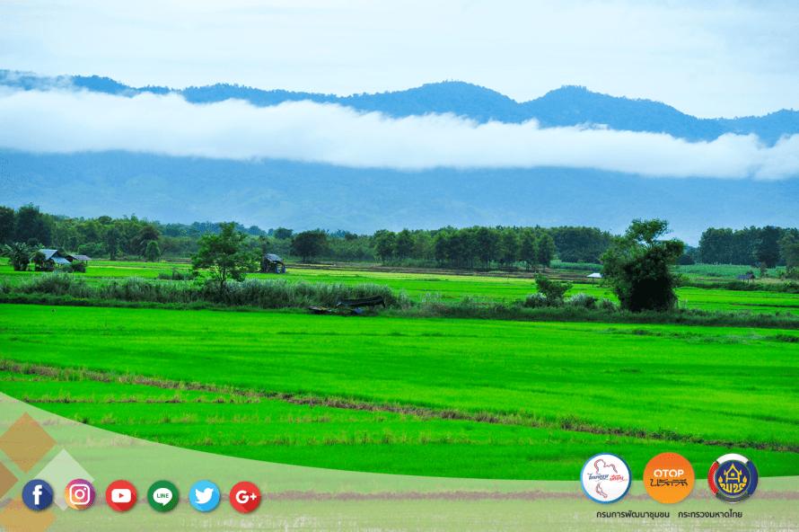 """เดินเที่ยวด้วยสองขาที่ """"บ้านสามขา"""" จ.ลำปาง ชมงานแกะสลักไม้ ผ้าฝ้ายสีธรรมชาติ ปศุสัตว์ไร่นา ข้าวปลากาแฟ ล้วนแต่เกษตรอินทรีย์ 1 - Amazing Thailand"""