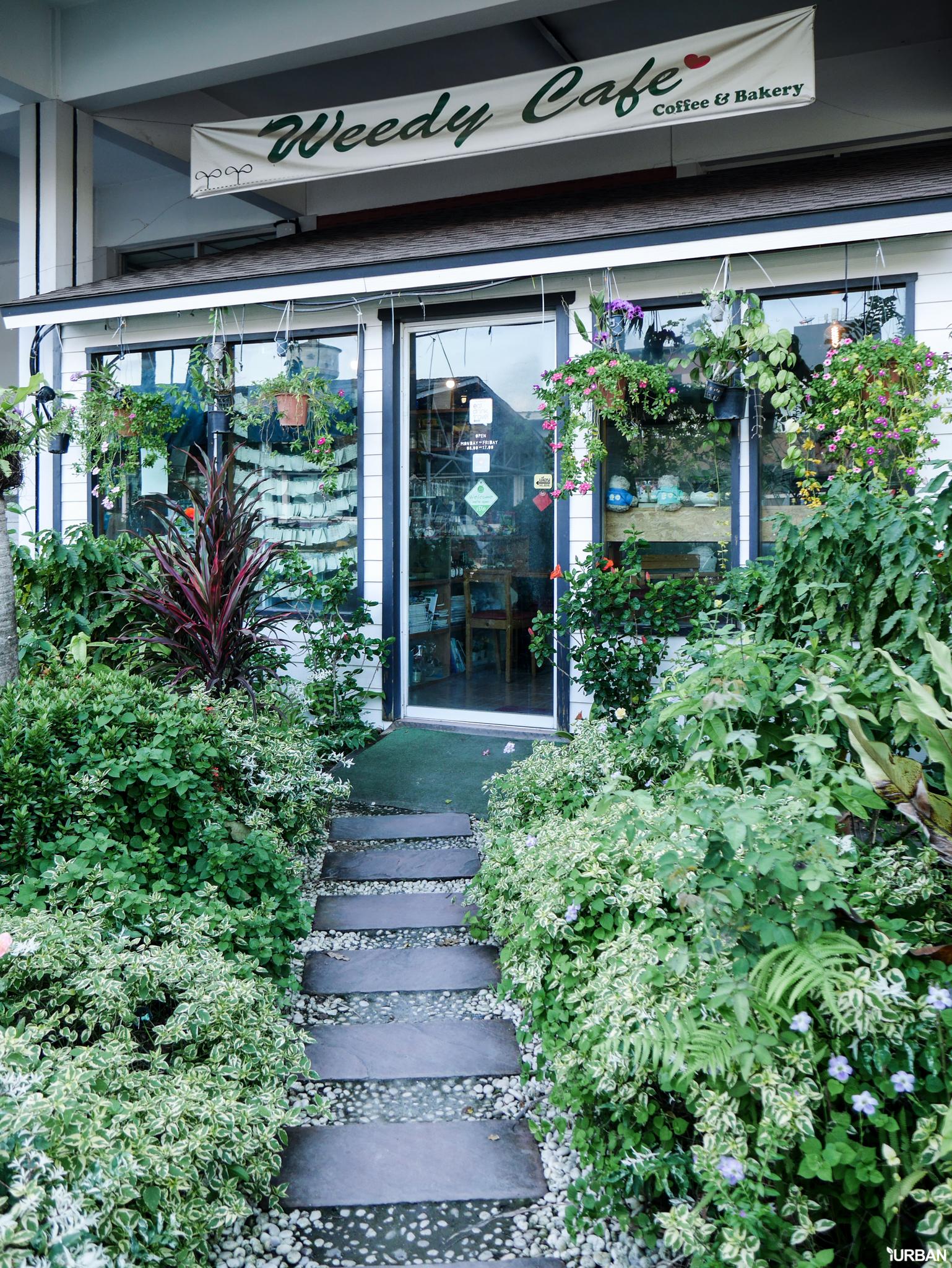 14 ร้านกาแฟ ม.เกษตร คาเฟ่สไตล์นักศึกษาและคนทำงาน + สำรวจ Co-Working Space ที่ KENSINGTON KASET CAMPUS (เคนซิงตัน เกษตร แคมปัส) 82 - cafe