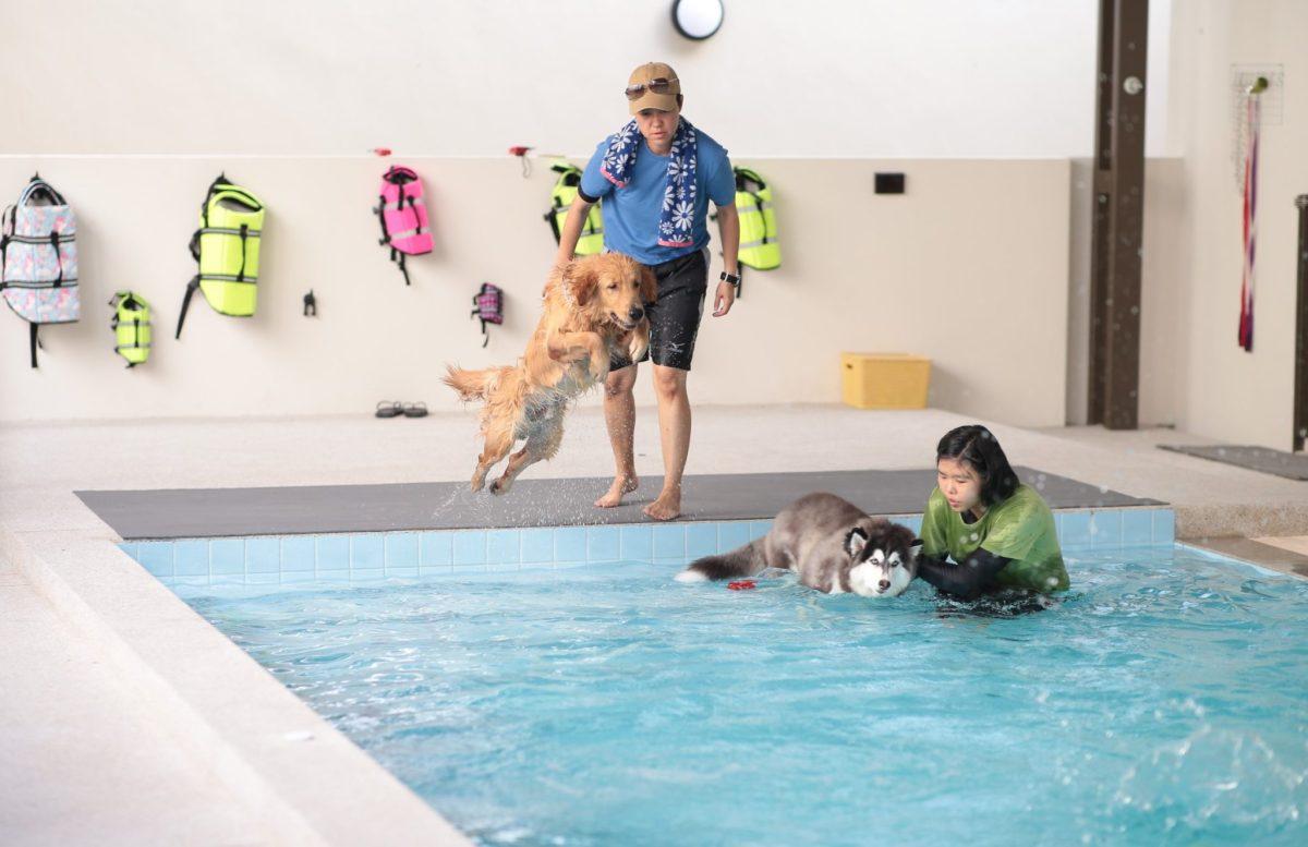 TRAIL and TAIL Pet-Friendly Community แหล่งแฮงค์เอ้าท์ใหม่ของคนเมือง พร้อมเติมความสุขให้สัตว์เลี้ยงแสนรักได้ทุกวัน 20 -