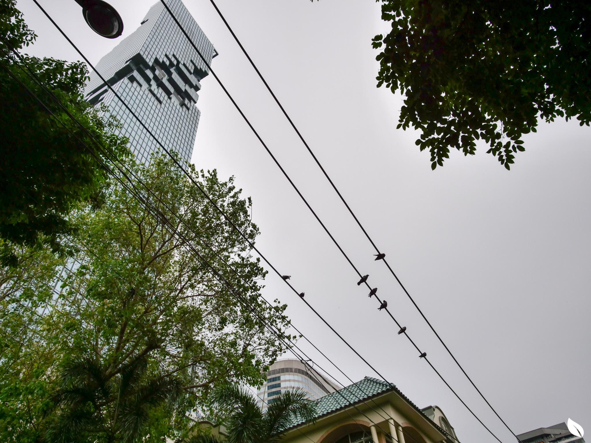 ANIL Sathorn 12 คอนโดสาทรสุดหรูที่ยกระดับคุณภาพชีวิตของผู้พักอาศัย ด้วยมาตรฐาน WELL Building Standard 40 - GRAND UNITY