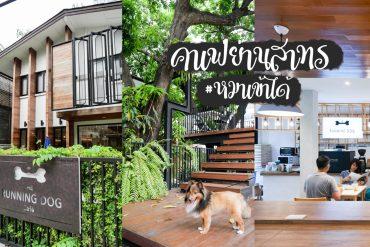 The Running Dog Cafe ร้านกาแฟ #หมาเข้าได้ สไตล์สถาปนิก ย่านสาทร 13 - ร้านกาแฟ