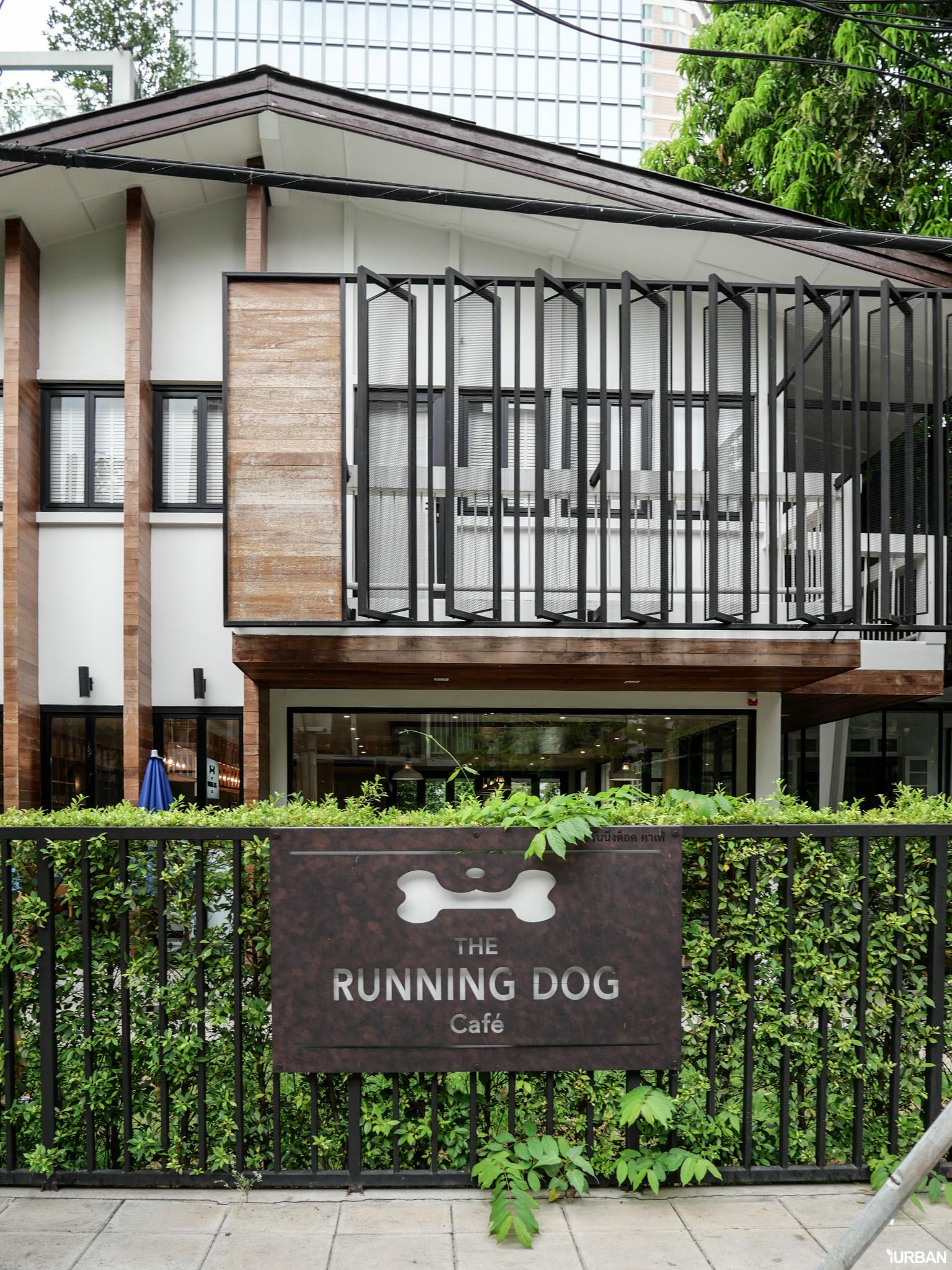 The Running Dog Cafe ร้านกาแฟ #หมาเข้าได้ สไตล์สถาปนิก ย่านสาทร 15 - cafe