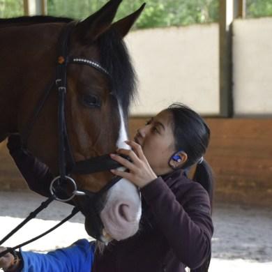 สมเด็จพระเจ้าลูกเธอเจ้าฟ้าสิริวัณณวรี นารีรัตนราชกัญญา ทรงเตรียมความพร้อมเพื่อทรงเข้าร่วมการแข่งขันศิลปการบังคับม้าระดับนานาชาติ 14 -