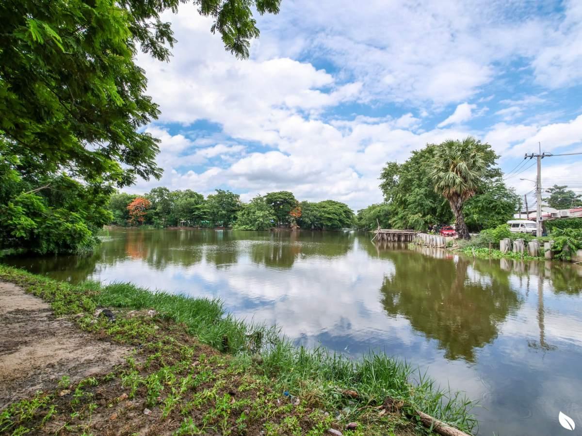 """""""ลาดพร้าว"""" มองหาบ้านสังคมดี ในงบสบาย ลองรู้จักทำเล """"เสรีไทย 38"""" กันก่อน 17 - AP (Thailand) - เอพี (ไทยแลนด์)"""