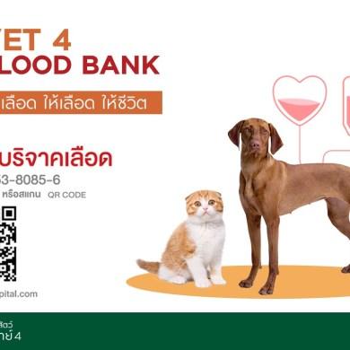 VET 4 BLOOD BANK ธนาคารเลือด ให้เลือด ให้ชีวิต 22 -